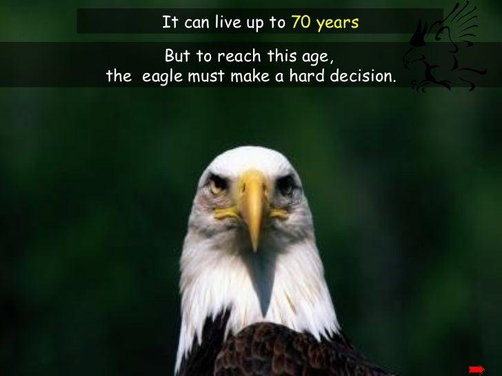 Rebirth Of The Eagle Slide 3