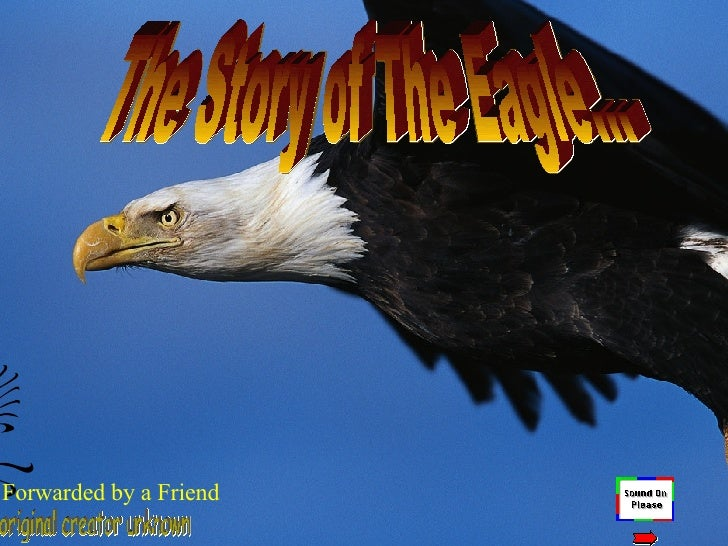 The Story of The Eagle… original creator unknown Forwarded by a Friend
