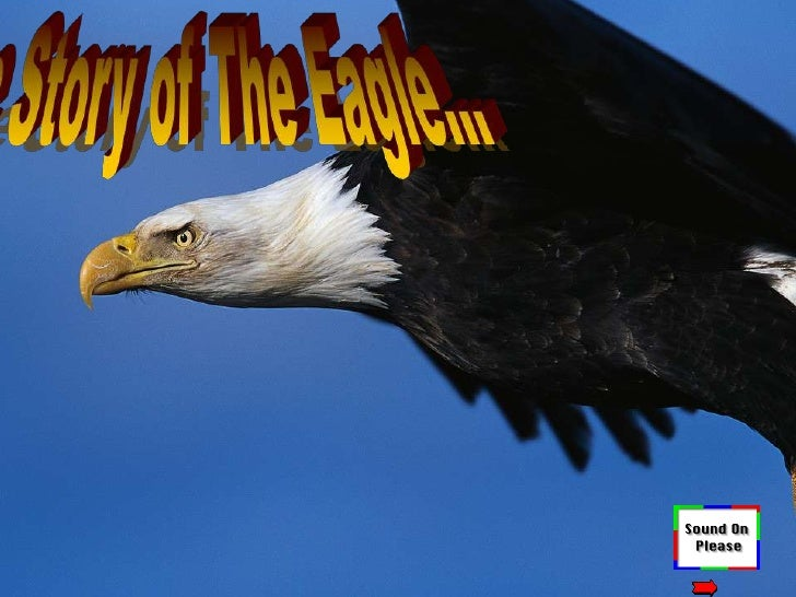 The Story of The Eagle…<br />