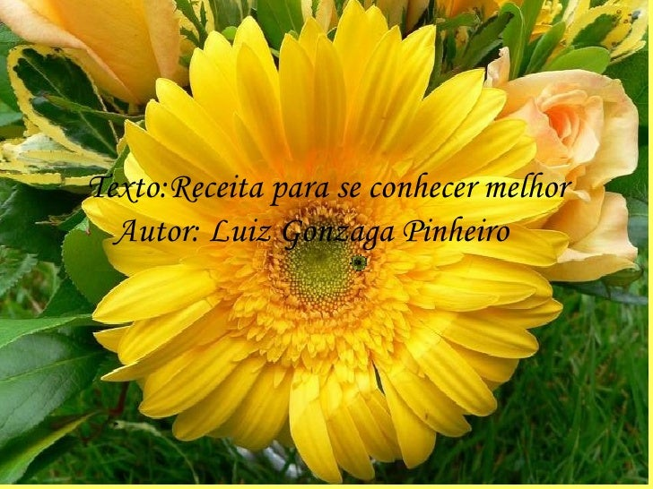 Texto:Receita para se conhecer melhor Autor: Luiz Gonzaga Pinheiro