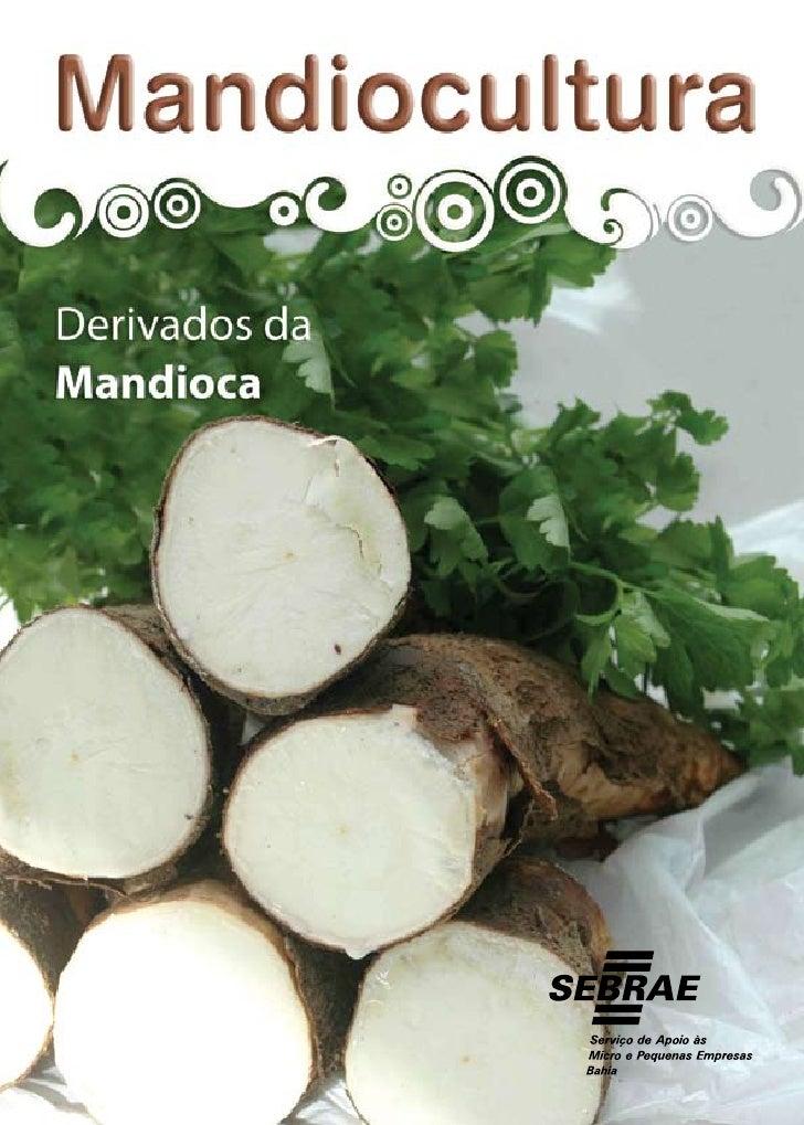 MANDIOCULTURA DERIVADOS DA MANDIOCA             Salvador          2009