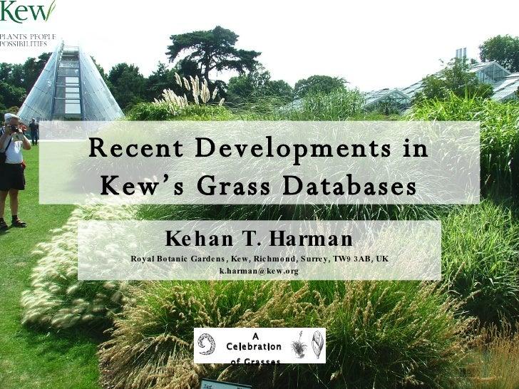 Recent Developments in Kew's Grass Databases Kehan T. Harman Royal Botanic Gardens, Kew, Richmond, Surrey, TW9 3AB, UK [em...