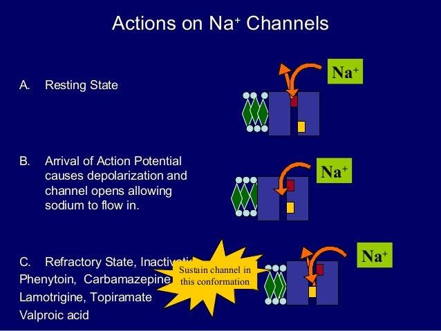 Carbamazepine mechanism of action pdf