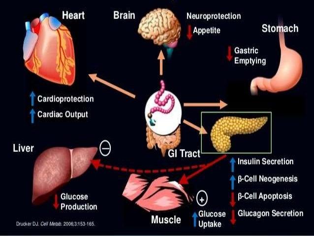 Recent Advances In Diabetes Mellitus