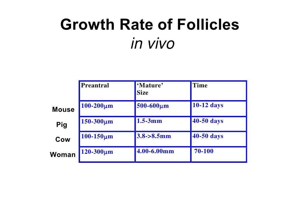Follicle Stimulating Hormone Infertility Treatments for FSH