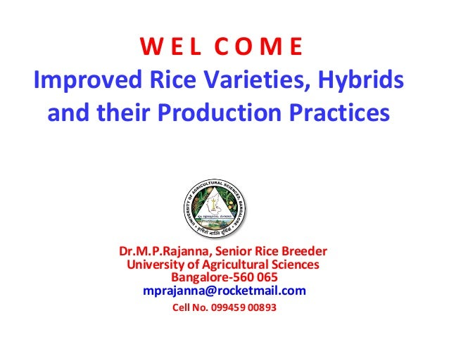 Improved Rice Varieties, Hybrids and their Production Practices Dr.M.P.Rajanna, Senior Rice Breeder University of Agricult...