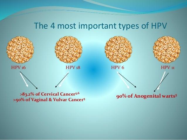 Recent Updates In Hpv Vaccines