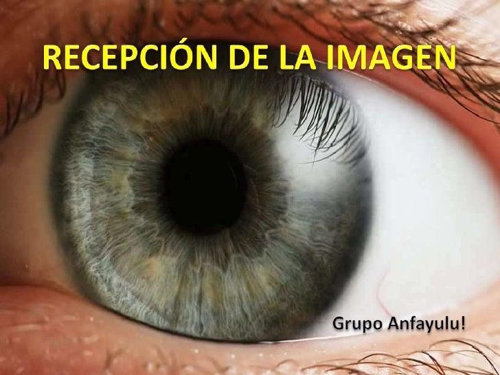 RECEPCIÓN DE LA IMAGEN<br />Grupo Anfayulu!<br />