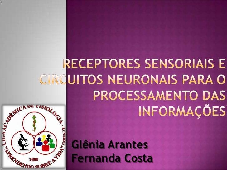 REcEPTORES SENSORIAIS E CIRCUITOS NEURONAIS PARA O PROCESSAMENTO DAS INFORMAÇÕES<br />Glênia Arantes<br /> Fernanda Costa<...