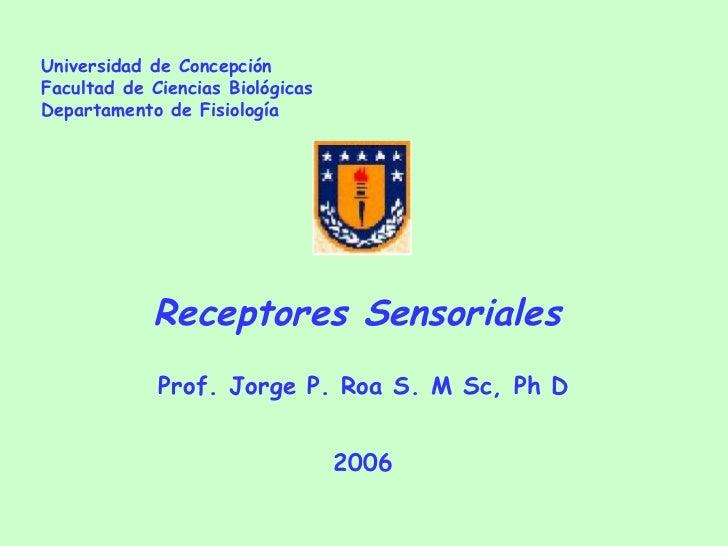 Universidad de Concepción Facultad de Ciencias Biológicas Departamento de Fisiología Receptores Sensoriales  Prof. Jorge P...