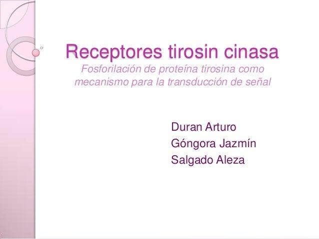 Receptores tirosin cinasa  Fosforilación de proteína tirosina como mecanismo para la transducción de señal                ...