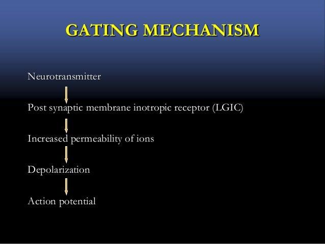 GATING MECHANISM Neurotransmitter Post synaptic membrane inotropic receptor (LGIC) Increased permeability of ions Depolari...