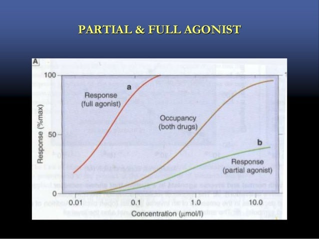 In the presence of ligand (A) equilibrium will depend on equilibrium constant i.e. /.  For pure antagonist it is zero. ...