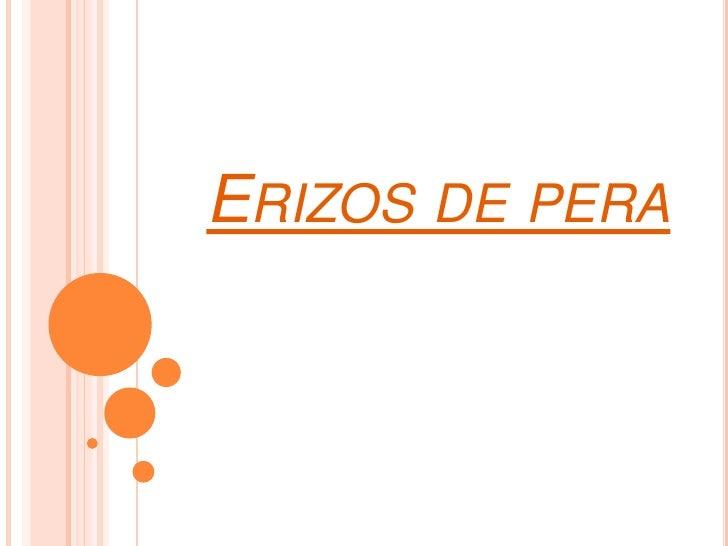 Receta Erizos De Pera Slide 2