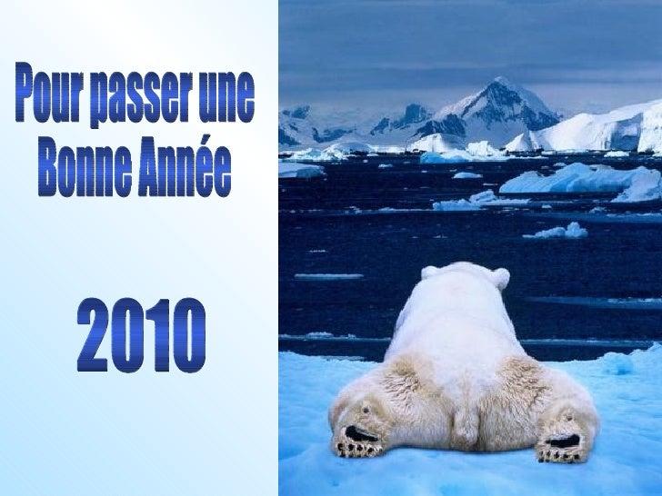 2010 Pour passer une Bonne Année