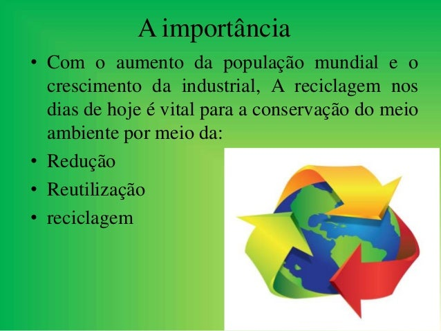 Educação ambiental para preservação nas escolas localizadas em comunidades de palafitas 8