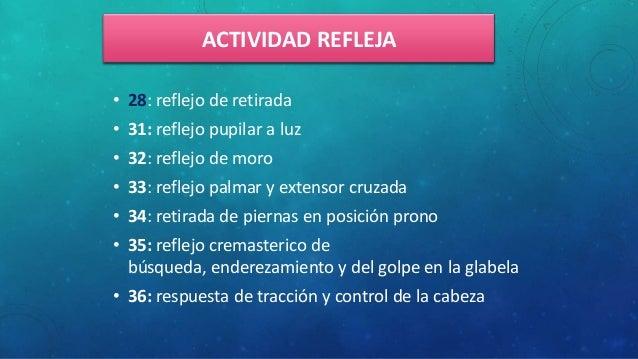 ACTIVIDAD REFLEJA • 28: reflejo de retirada • 31: reflejo pupilar a luz • 32: reflejo de moro • 33: reflejo palmar y exten...