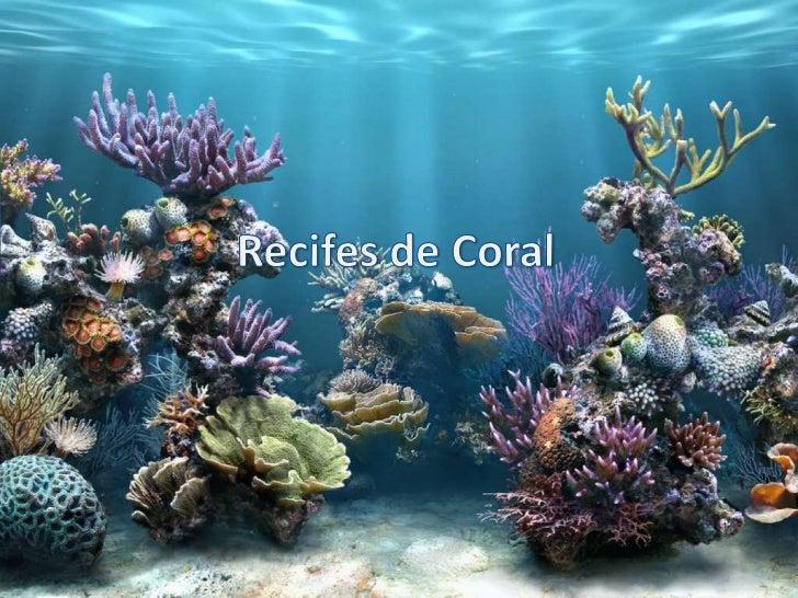 Recifes de Coral<br />