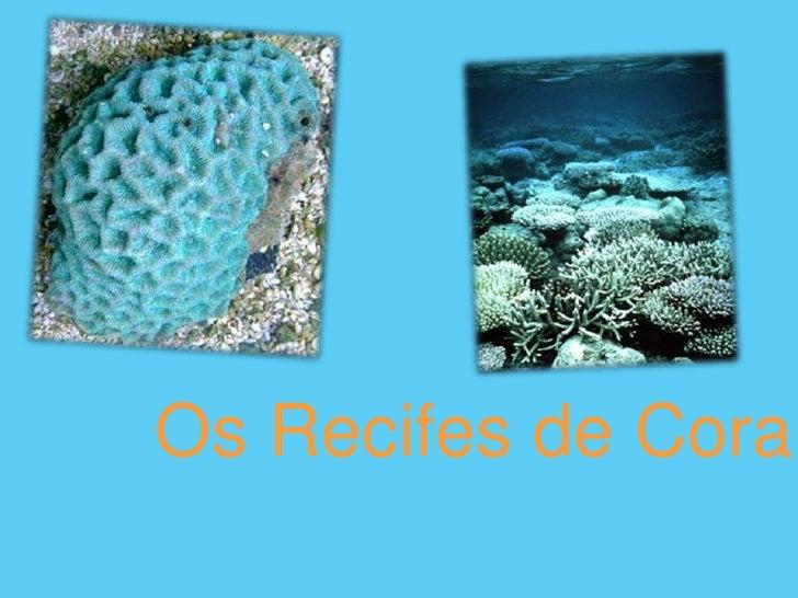 Os Recifes de Coral<br />
