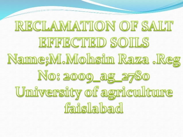 Types of salt affected soils  Sodic soils  Saline sodic  Saline soils