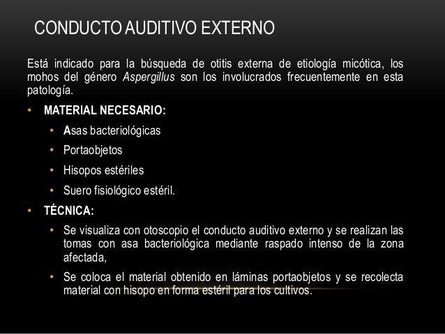 CONDUCTO AUDITIVO EXTERNOEstá indicado para la búsqueda de otitis externa de etiología micótica, losmohos del género Asper...