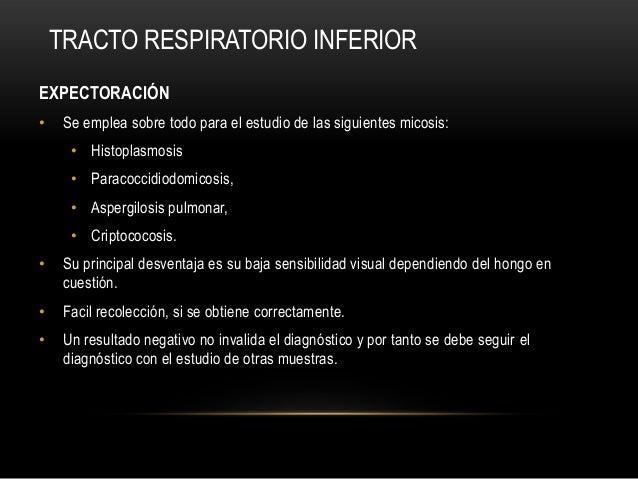 TRACTO RESPIRATORIO INFERIOREXPECTORACIÓN• Se emplea sobre todo para el estudio de las siguientes micosis:• Histoplasmosis...