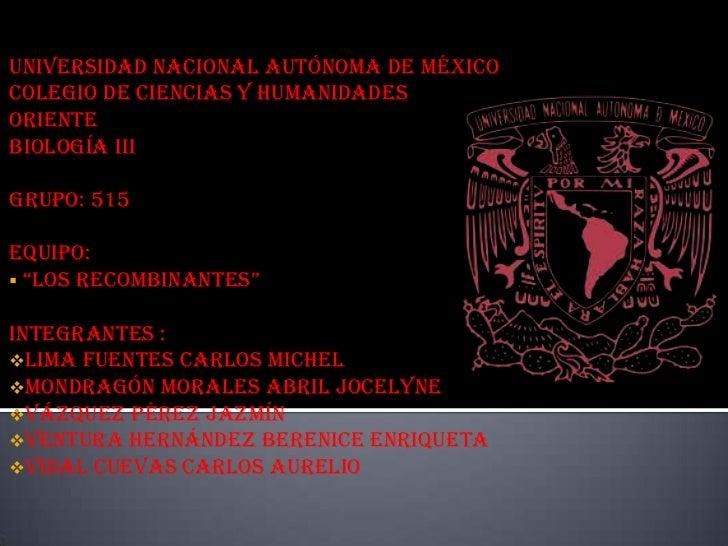 """Universidad Nacional Autónoma de MéxicoColegio de Ciencias y HumanidadesOrienteBiología IIIGrupo: 515Equipo: """"LOS RECOMBI..."""