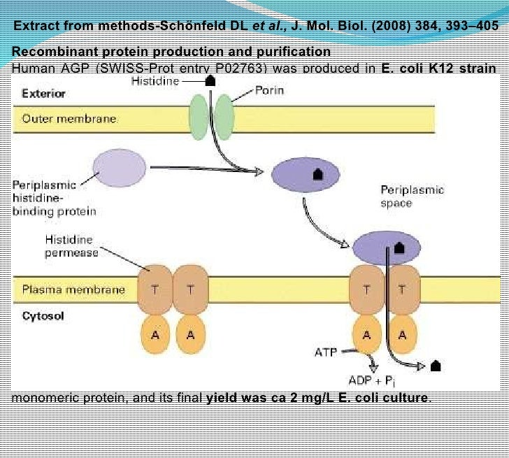Recombinant protein expression and purification Lecture