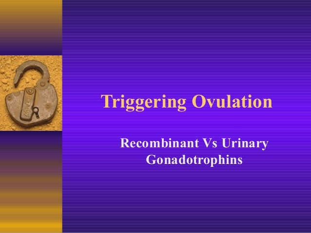 Triggering Ovulation Recombinant Vs Urinary Gonadotrophins