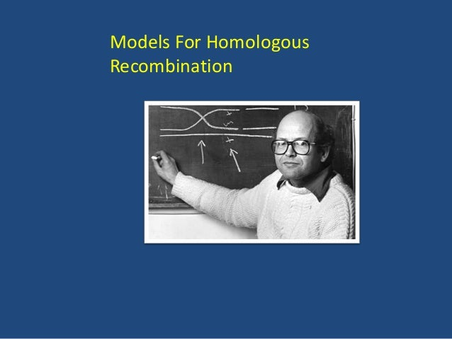 Limitation of Holliday Model •Although the original Holliday model accounted for many important aspects of recombination (...
