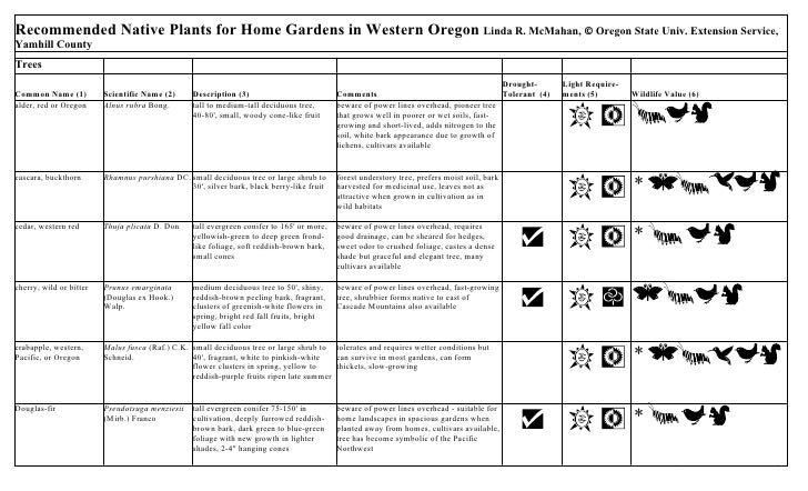 Recommended native plants for home gardens in the willamette valley