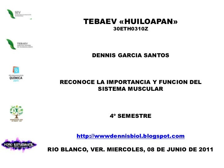 TEBAEV «HUILOAPAN»<br />30ETH0310Z<br />DENNIS GARCIA SANTOS <br />RECONOCE LA IMPORTANCIA Y FUNCION DEL SISTEMA MUSCULAR<...