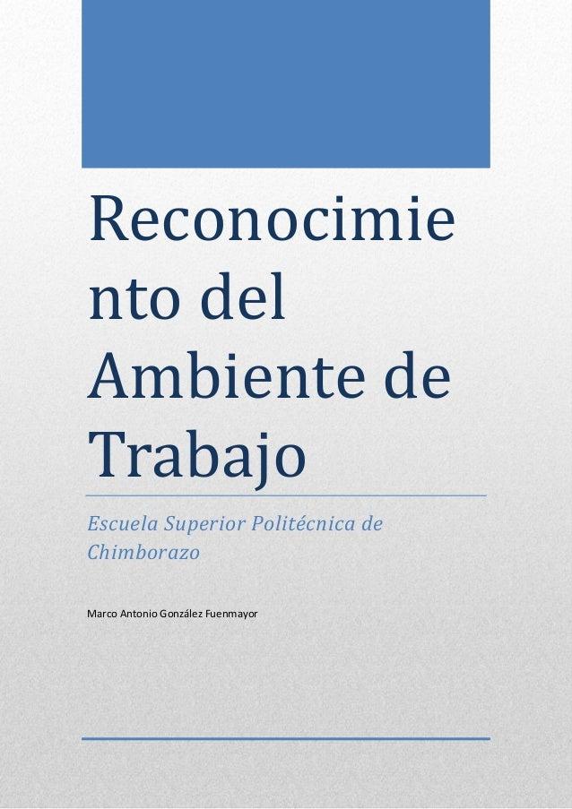 5-12-2013  Reconocimie nto del Ambiente de Trabajo Escuela Superior Politécnica de Chimborazo Marco Antonio González Fuenm...