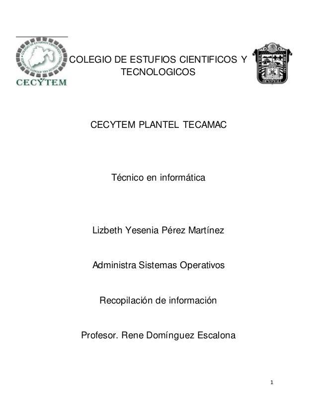 1 COLEGIO DE ESTUFIOS CIENTIFICOS Y TECNOLOGICOS CECYTEM PLANTEL TECAMAC Técnico en informática Lizbeth Yesenia Pérez Mart...