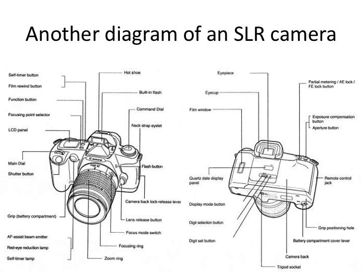 recor presentation on slr digital cameras 12 728?cb=1306161878 recor presentation on slr & digital cameras
