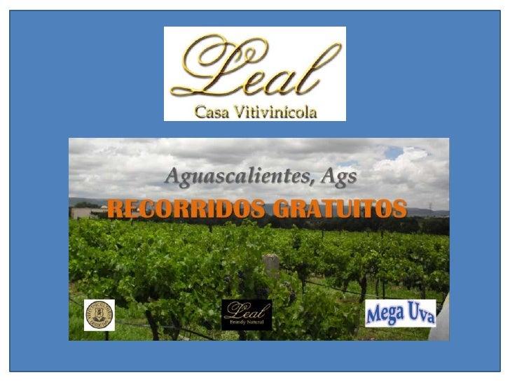 Los invitamos a conocer la Casa Vitivinícola Leal de Aguascalientes,    en la cual se ofrece durante todo el año de manera...