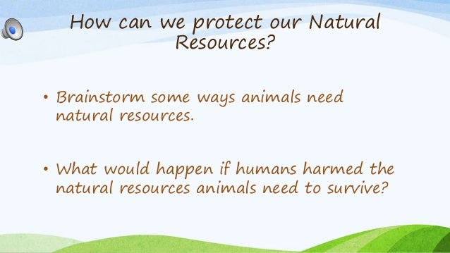 Conservation Of Natural Resources Review Of Literature