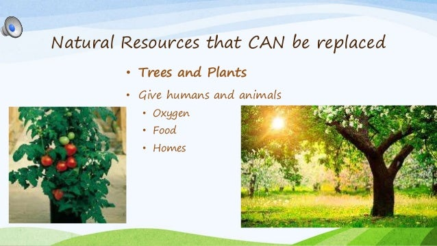 Natural Resources Class  Ppt