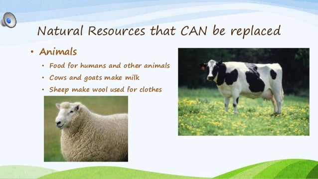 Can Natural Resorses Run Out