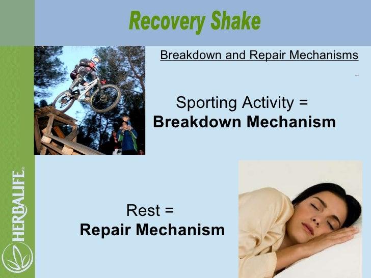 Breakdown and Repair Mechanisms Sporting Activity =  Breakdown Mechanism Rest =  Repair Mechanism Recovery Shake