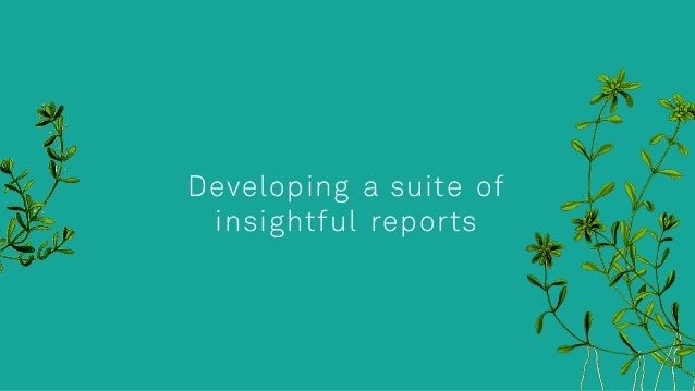 Developing a suite of insightful reports