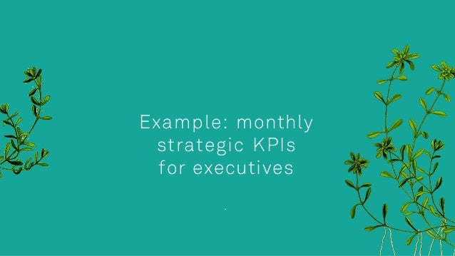 Example: monthly strategic KPIs for executives .
