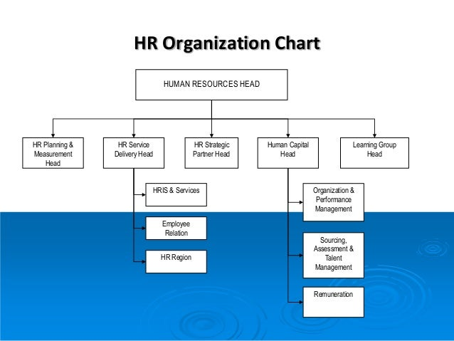 human resource management biases in the context of the selection essay 2008 society for human resource management myrna gusdorf, mba   recruitment and selection can be staggering hiring new employees should occur  only.