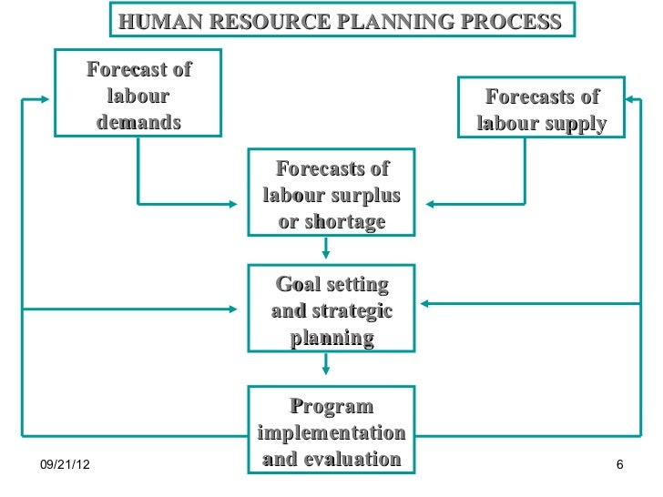 Fundamentals of Human Resources Strategic Planning: Sample HR Plan Available