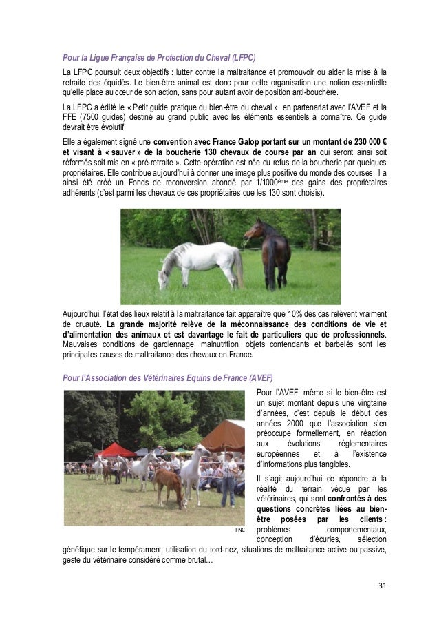 32  FNC  A sa création il y a 12 ans, la Commission « Bien-être et Comportement » de l'AVEF travaillait principalement sur...