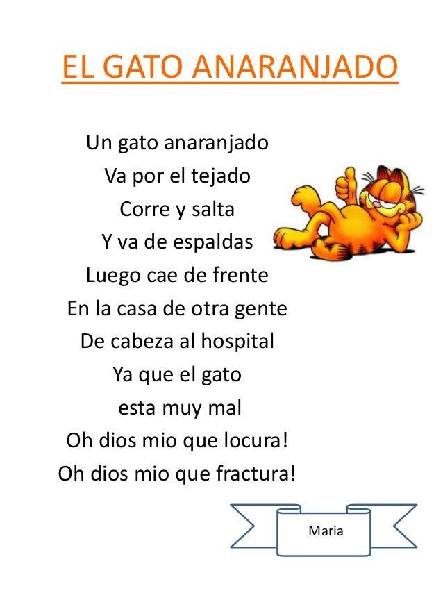EL GATO ANARANJADO Un gato anaranjado Va por el tejado Corre y salta Y va de espaldas Luego cae de frente En la casa de ot...