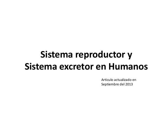 Sistema excretor y Reproductor en los seres humanos