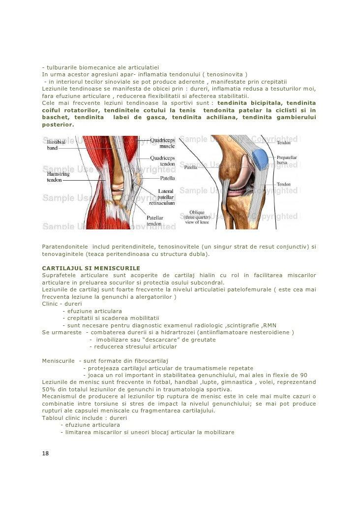 - tulburarile biomecanice ale articulatieiIn urma acestor agresiuni apar- inflamatia tendonului ( tenosinovita ) - in inte...