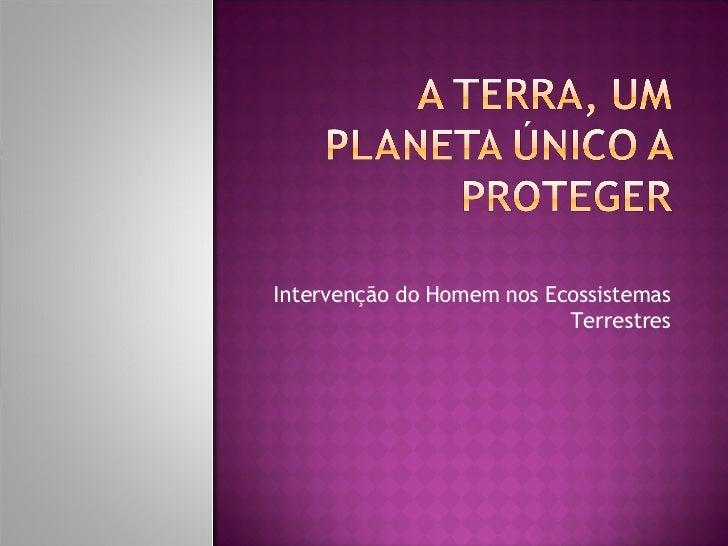 Intervenção do Homem nos Ecossistemas Terrestres