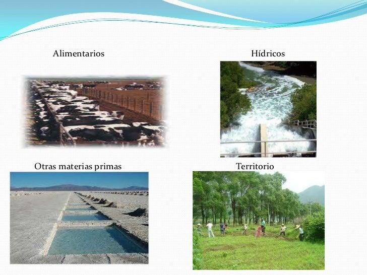 Alimentarios           HídricosOtras materias primas   Territorio